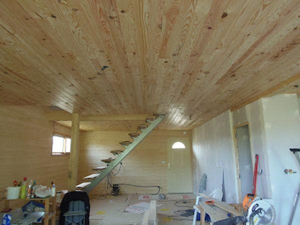 Faux-Plafond - Isolation + Lambris
